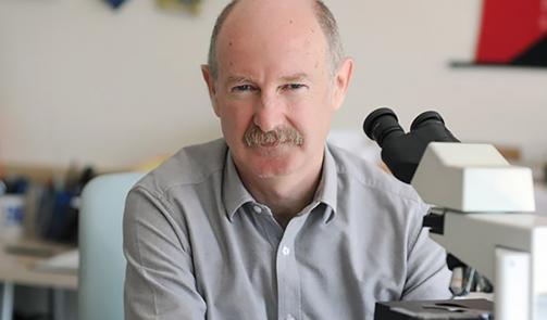 Control del comportamiento guiado visualmente mediante el recuerdo holográfico de conjuntos corticales, profesor Rafael Yuste